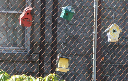 Just a few of a bunch of colorful birdhouses, attached to a fence, set far back from the road.