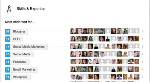 With LinkedIn's new skills endorsements, at a glance you can see that while you might not want me to fix your leaking faucet, you probably can trust me to blog for you.