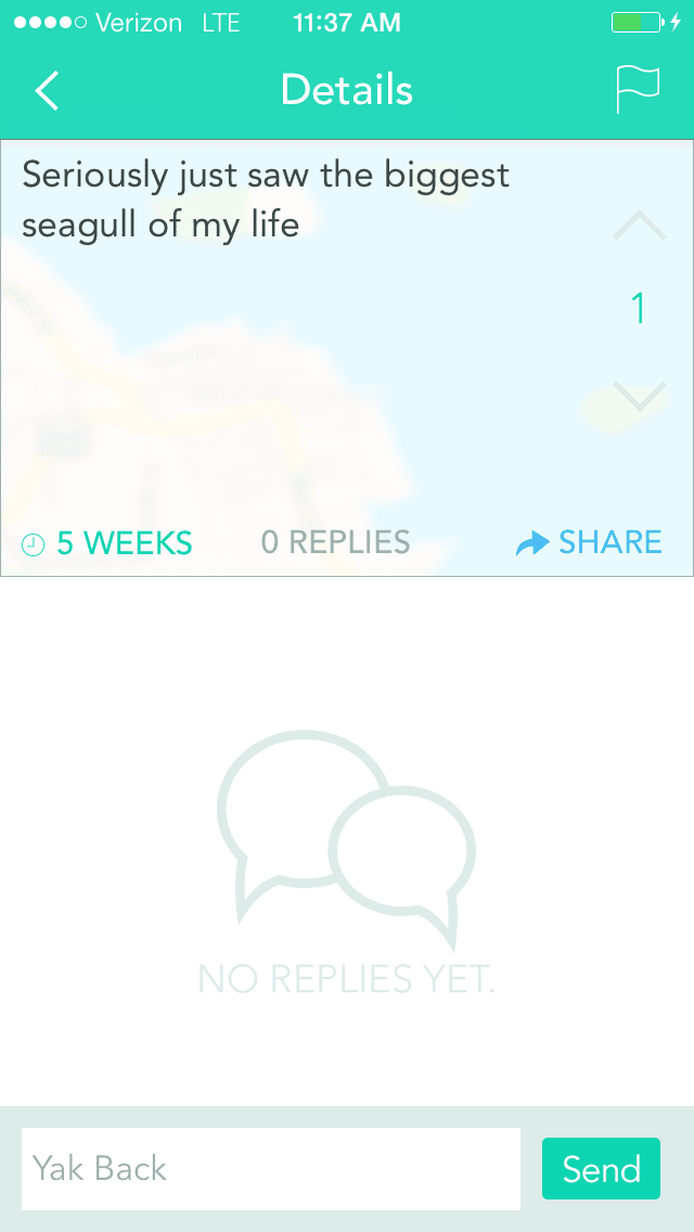 Ride the Yak: Why YikYak is Possibly My New Favorite App